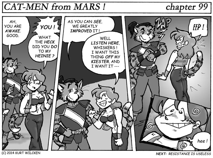 CAT-MEN from MARS:  Chapter 99 — Decorative and Functional